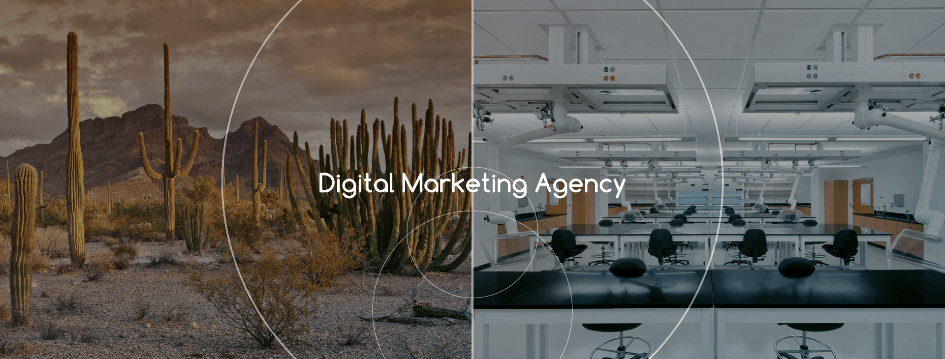 digital-marketing-agency.png