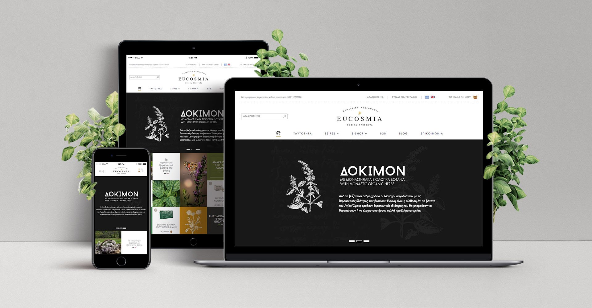 Eshop_Design-Showcase-Eucosmia